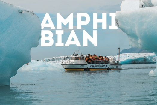amphibian-tour